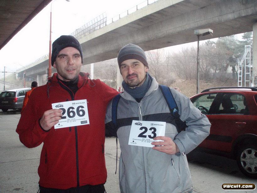 20101231 Bratislavske mosty