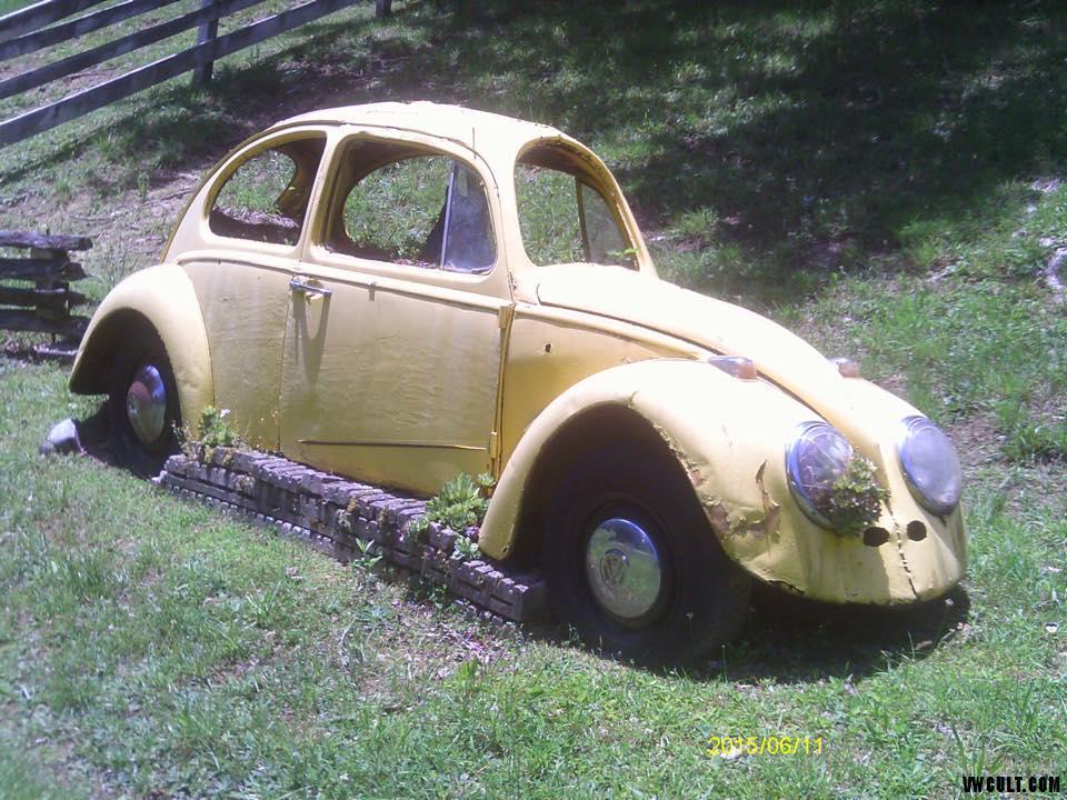VW Beetle slim